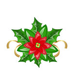 Flower poinsettia for christmas decoration