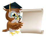 Owl With Scroll Document