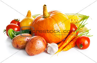 autumnal harvest fresh vegetables