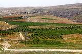 Holy Land landscape