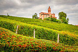 Landscape view of vineyards and old church in Piemont area, Ital