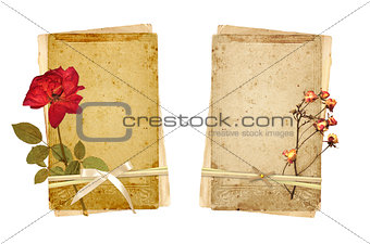 Old cards and dried rose