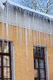 Snow-covered roof with big icicles in winter day