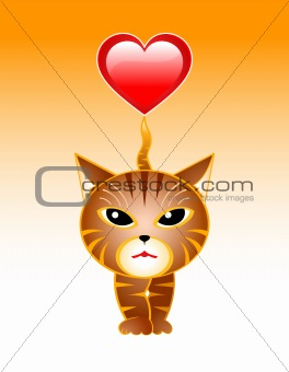 cat with the heart