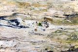 Wet Wood Texture 1