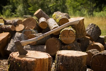 Axe With Chopped Wood