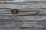 nail texture