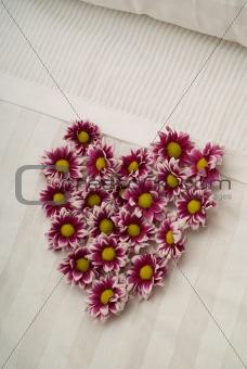 Valentine daisy heart