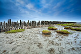 mud at low tide on Waddensee, Moddergat