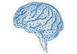 brain with geometric pattern, vector
