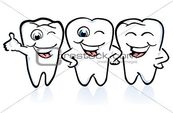 arrangement of the teeth, good conditions