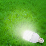 Illuminated light bulb on grass