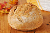 Loaf of artisan whole wheat bread