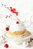 Winter cupcake.