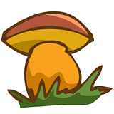 Vector illustration. mushroom in the grass