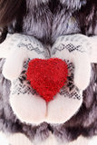 heart on mittens