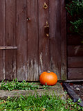 Ripe pumpkin in front of a wooden door