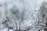Ice Patterns On A Winter Window
