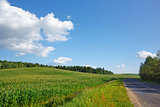 Summer landscape with road and blue sky