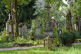 old graveyard in Freiburg