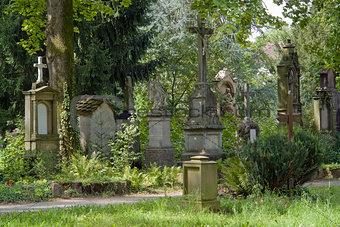 old graveyard in Freiburg