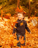 Cute child in autumn forest