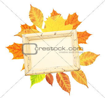 Autumn leaves and wooden frame