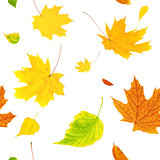 Seamless background with flying autumn leaves