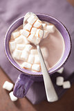 cocoa with mini  marshmallows in spoon