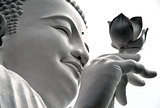 white Buddha with a lotus in his hand