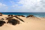 Corralejo natural park (Fuerteventura - Spain)