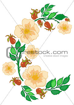 Abstract roses branch