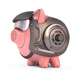 Piggy Bank Shield