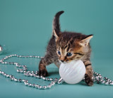 cute little kitten with white Christmas ball