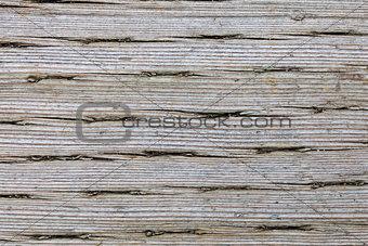 Old Pressure Treated Wood Macro Texture