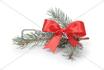 blue spruce twig with ribbon bow