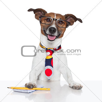 business dog typewriter