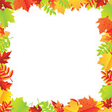 Colorful Autumn Leafs Frame