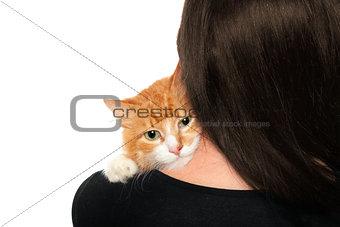 Kitten on the shoulders of women