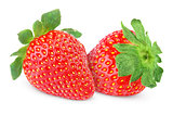 Two strawberry fruits