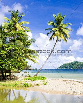 Batteaux Bay, Tobago