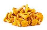 Heap of chanterelle mushrooms
