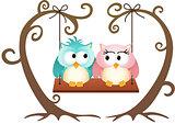 Cute couple owls in love on a swing