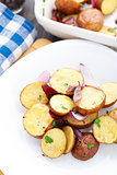 Baked potato with red onion