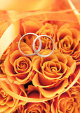 Gold wedding rings on the orange roses