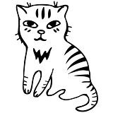 Vector. Tabby cat. Black outline sketch