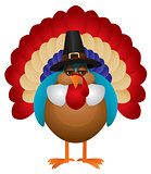 Colorful Turkey with Pilgrim Hat Illustration