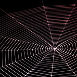 painted spiderweb