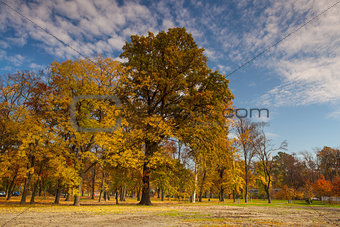 Autumn in the popular park Stromovka in Prague