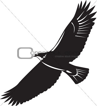 American Eagle Flying Woodcut